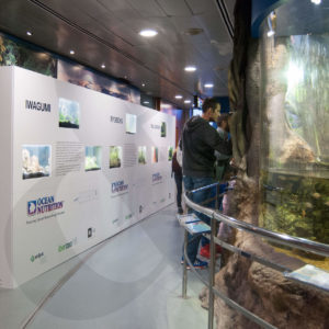 Fair spaces stand iberzoo